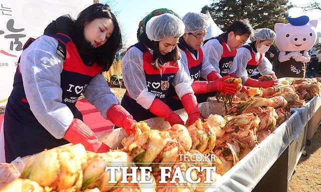 중국산 수입 김치 15개 제품에서 식중독을 일으키는 여시니아균이 검출됐다. 사진은 기사내용과 관련없음. / 더팩트 DB