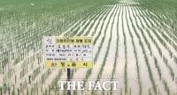 정읍시 대표브랜드 '단풍미인 쌀', 경쟁력 높이기 '온 힘'