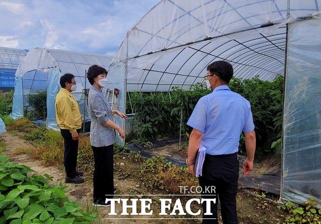 임실군이 전라북도농업기술원과 농작물 안정생산을 위한 현장기술 지원단을 운영한다. /임실군 제공