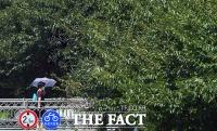 '폭염 막아주는 양산' [포토]