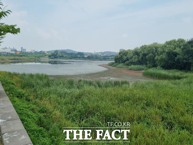 34%의 저수율을 보이고 있는 천안시 서북구 매주 저수지 모습. / 천안=김경동 기자