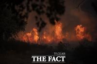 '프랑스 대형 산불에 6000명 대피'…마크롱