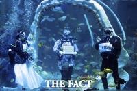 '예식장은 수족관', 코로나 피해 수중 결혼식 올리는 커플 [TF사진관]