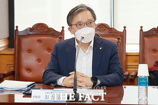 최성일 금융감독원 부원장.