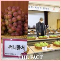 경기도농업기술원, 경기도 최고 포도·복숭아 품종 선정