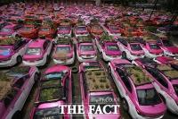 코로나 여파, 택시 지붕에서 '채소 재배'하는 태국 [TF사진관]