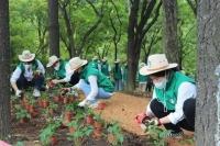 스타벅스, 고객과 서울숲공원에 300평 숲 조성