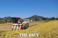 장성군,올해 쌀 생산20%증가…2만2000여톤 수확 전망