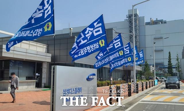 삼성D 노조 21일 선두 파업…창사 이래 첫 쟁의 현실화