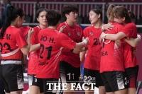 여자 핸드볼, 8강서 스웨덴에 9점차 완패